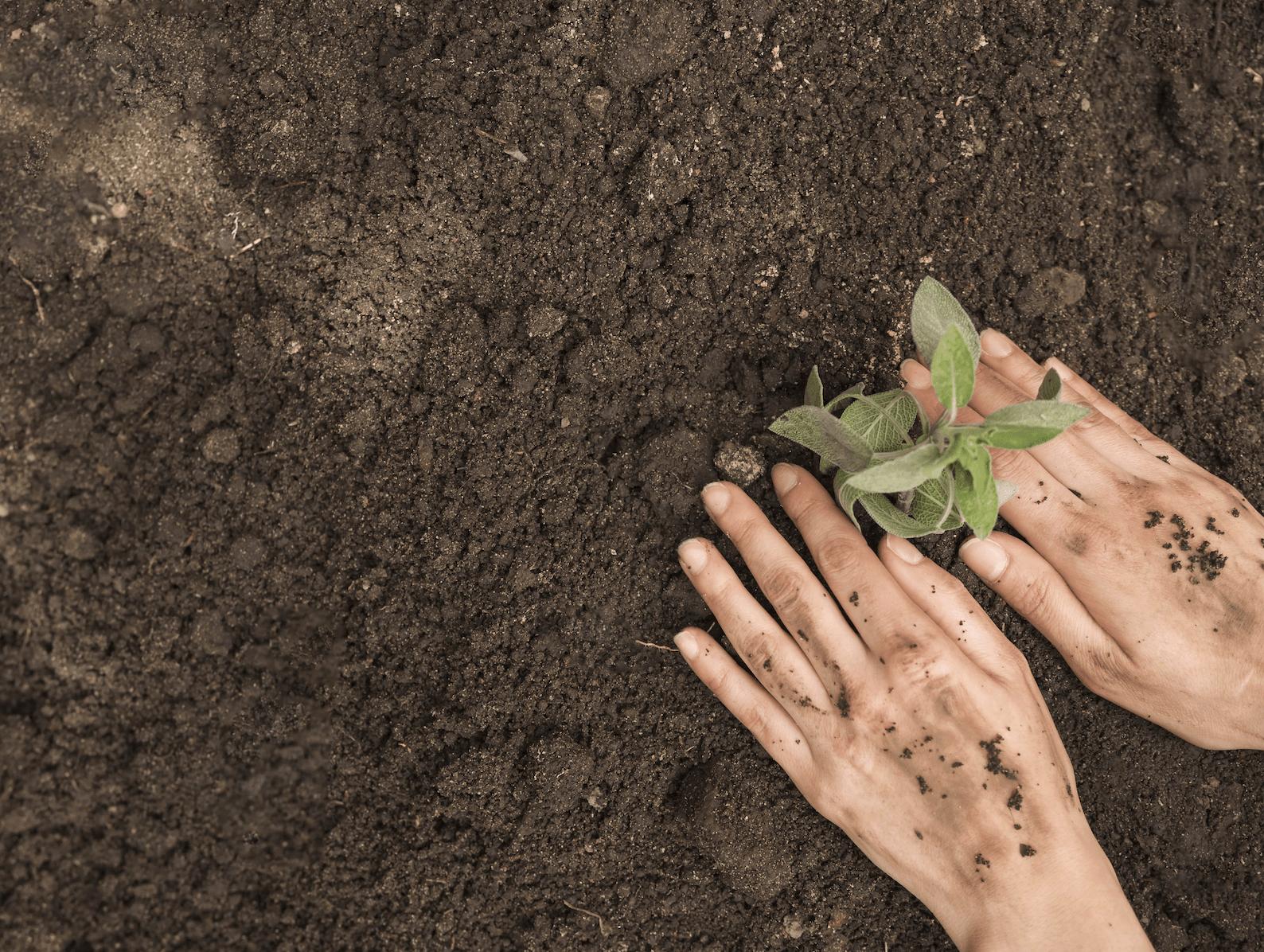 Donnons aux Chambres d'agriculture les moyens d'accompagner la transition écologique