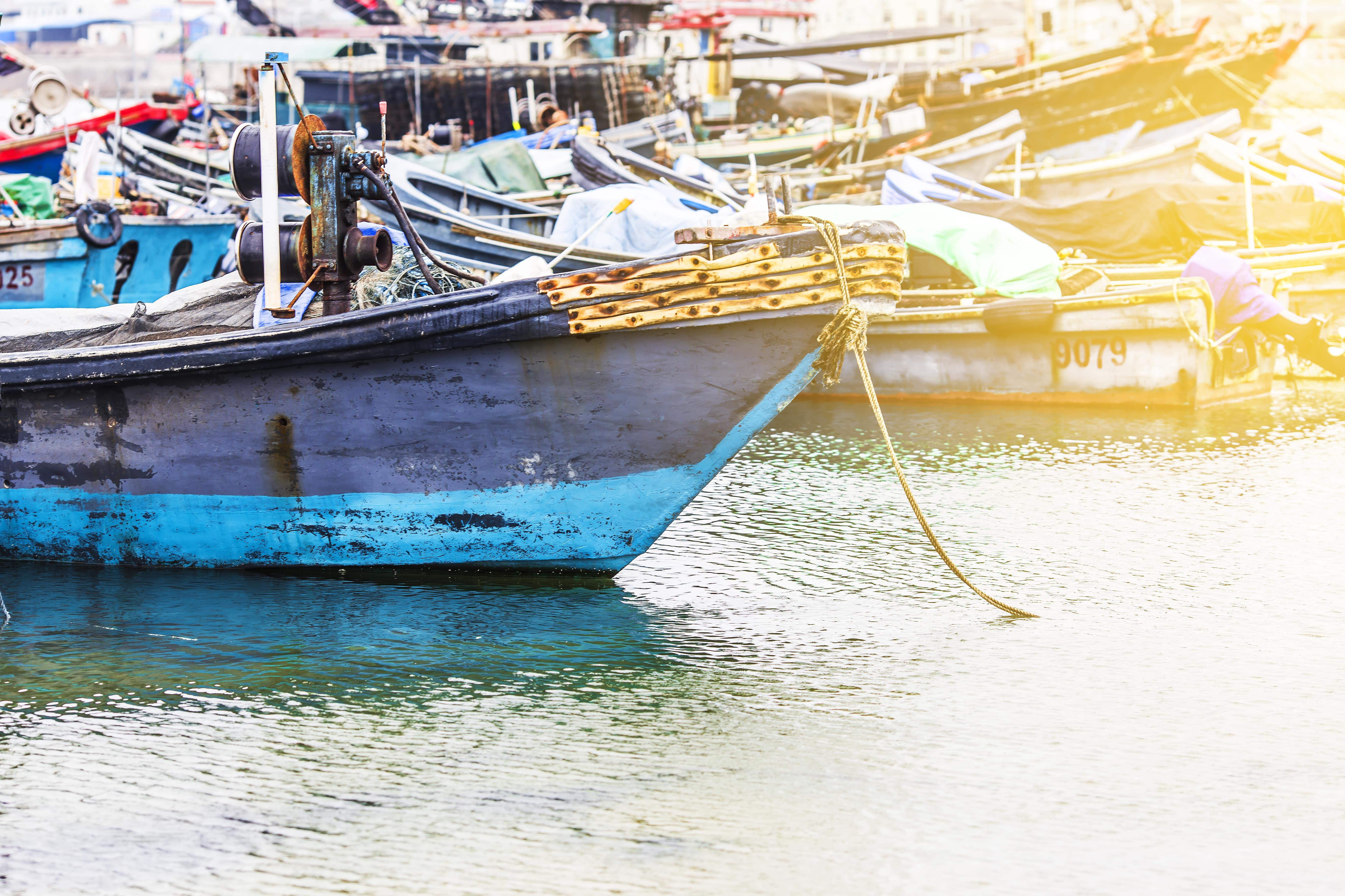 Concilier préservation de l'environnement et compétitivité de notre filière pêche